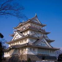 Chiba Castle, Ичикава