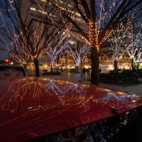 Xmas illuminations@Cyuo Park  20061223-165632, Ичикава
