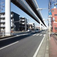 モノレール高架, Ичикава