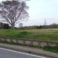 貝塚トンネル上, Ичикава