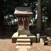 Shimoda-Benzaiten  下田弁財天  (2009.07.25), Кашива