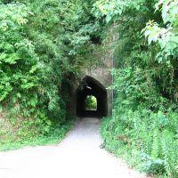 狸谷隧道, Мобара
