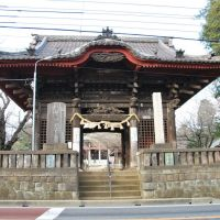 Niō-mon Gate, Chiba-dera Temple  千葉寺 仁王門  (2009.02.11), Нарашино