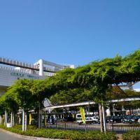 Chiba chuuouku 千葉駅前, Нарашино