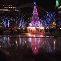 Xmas illuminations@Cyuo Park  20061215-195019, Нарашино