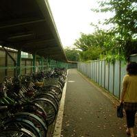 野田市駅前駐輪場の小径, Нода