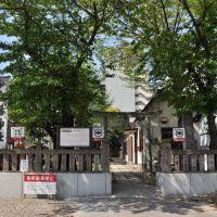 Shirahata-Jinja  白幡神社  (2009.04.29), Савара