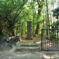 Site of Inohana Castle  亥鼻城址  (2009.07.25), Савара