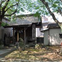 Ryūzō-Jinja  龍蔵神社  (2009.04.29), Фунабаши