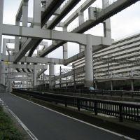 Monorail in Chiba, Хоши