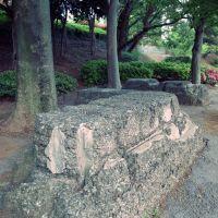 Remains of Railroad Regiment, Chiba Park 千葉公園 鉄道第一連隊 ウインチ跡, Хоши