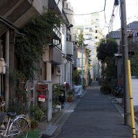 Kotoku-Botan(江東区牡丹3丁目付近), Мачида