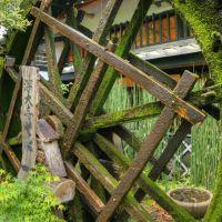 Waterwheel, Митака