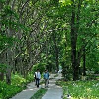 Passage , Jindai Botanical Garden, Митака