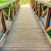 Wetland bridge, Митака