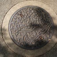 Manhole at Metoroporitan Park, Митака