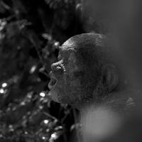 Stone image of Japanese Buddhist monk, Митака