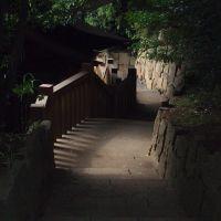 Jindai-ji Temple, Митака