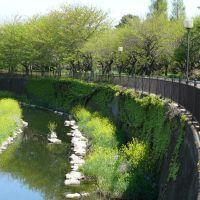 仙川(三鷹・新川丸池公園), Митака