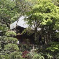Jindaiji Temple, Митака