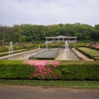 深大寺植物園, Митака