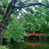 安田庭園, Тачикава