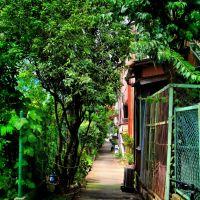 Alley in Kitasuna 北砂 暗渠路地 [ys-waiz.net], Токио