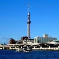 隅田川テラス 東京スカイツリー 遊覧船 , Scenic boat cruising. Sumida River., Токио
