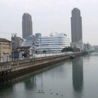 yokojikken-gawa river 横十間川(東京都江東区), Хачиойи