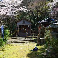八坂神社, Анан