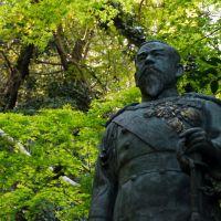明治天皇像, Анан