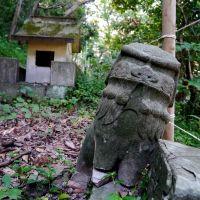 金刀比羅神社 奥の院 狛犬(吽), Анан