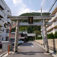 富田八幡神社 鳥居, Анан