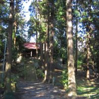 愛宕塚古墳&神社 (壬生町壬生甲) 前方後円墳の上に神社, Ашикага