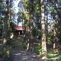 愛宕塚古墳&神社 (壬生町壬生甲) 前方後円墳の上に神社, Кавачи