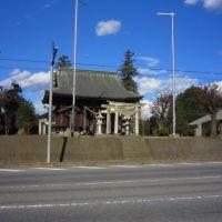 星宮神社 (下野市細谷), Отавара