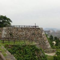 鳥取城, Йонаго
