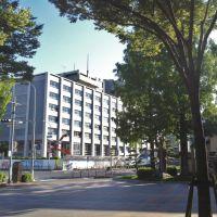 鳥取県庁, Йонаго