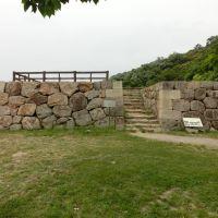 鳥取城, Курэйоши