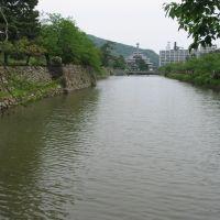 鳥取城の堀, Курэйоши