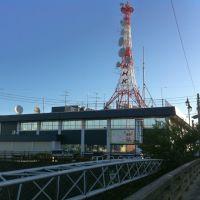 NHK鳥取放送局, Курэйоши