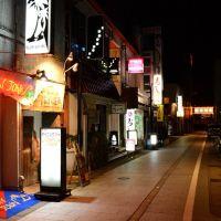 small bar area of Toyama, Камишии