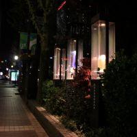 ミニケースギャラリー/富山県富山市, Камишии