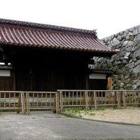 富山 城址公園, Камишии
