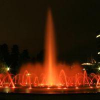 fountain at night, Камишии