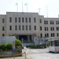 1.富山県庁, Камишии
