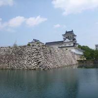 富山城址, Камишии