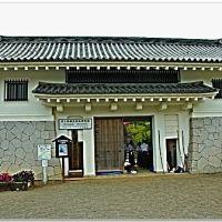 003 AMAGA Castle - 天ヶ城 > 城門 -, Такаока