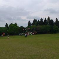 天ヶ城公園, Такаока