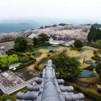 天ケ城からの桜, Такаока